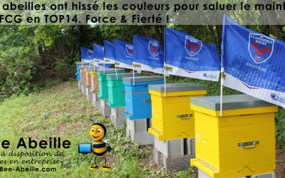 Les abeilles saluent le FCG
