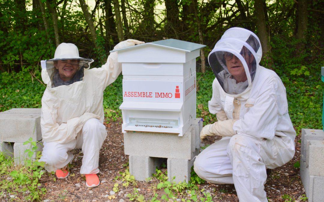 La ruche d'Assemble Immo, un parrainage exemplaire