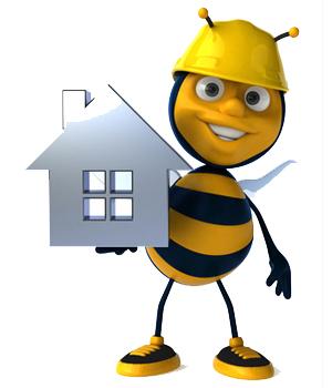 Bee abeille l'apiculture 2.0
