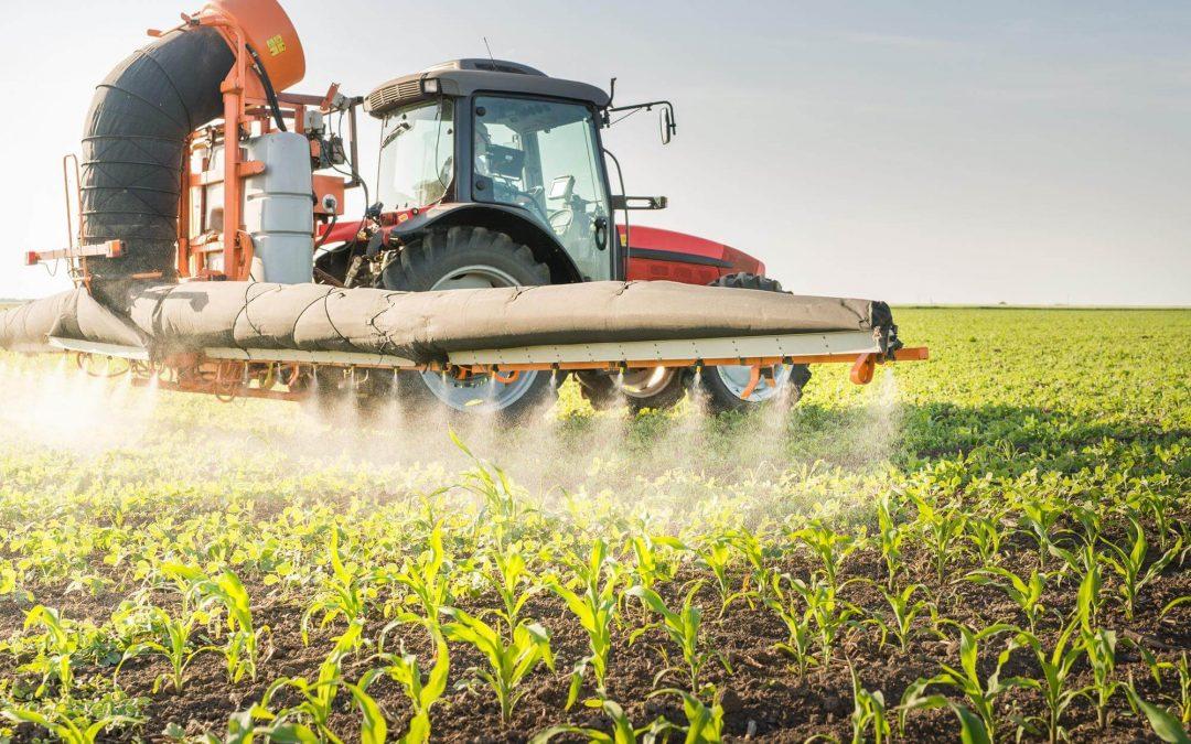 Les abeilles accros aux pesticides